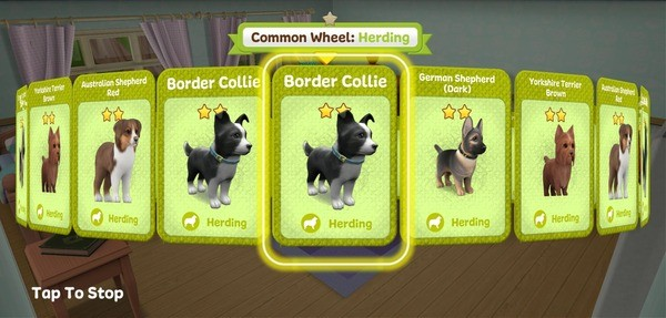 Dog Town Screenshot 1