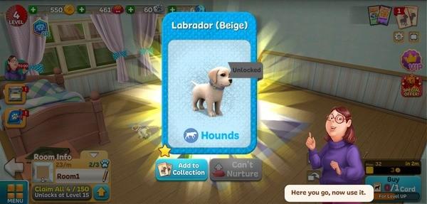 Dog Town Screenshot 2