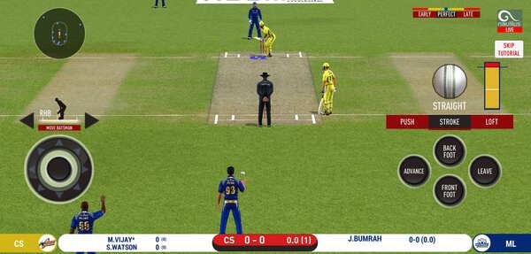 Real Cricket 20 Screenshot 1