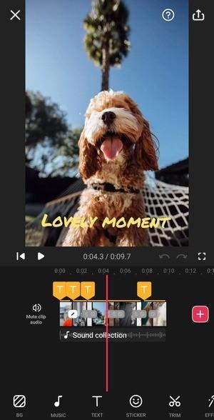 Video Guru - Video Maker Screenshot 2